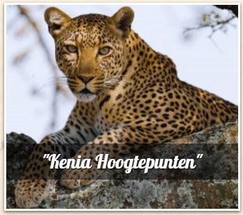 avtours - Safari Kenia